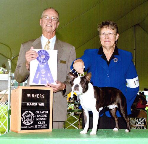 Doc's Boston Terriers - Rudy